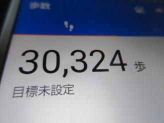 291  歩数計(2)