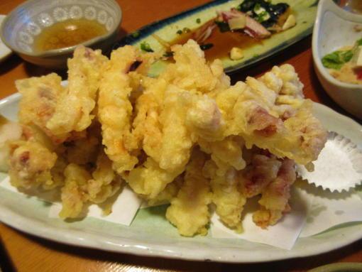 028  イカの天ぷら(1)