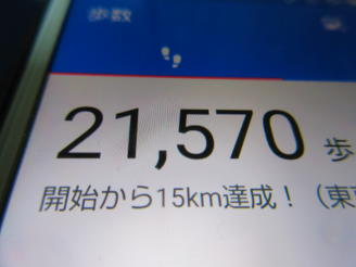291  歩数計(1)