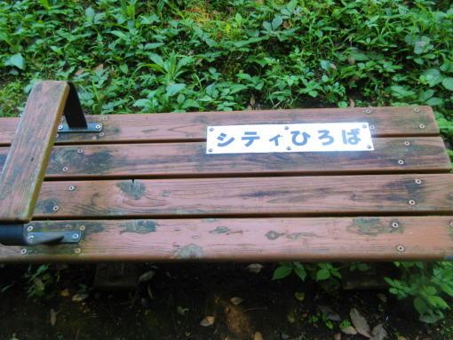 202  謎のベンチ(1)