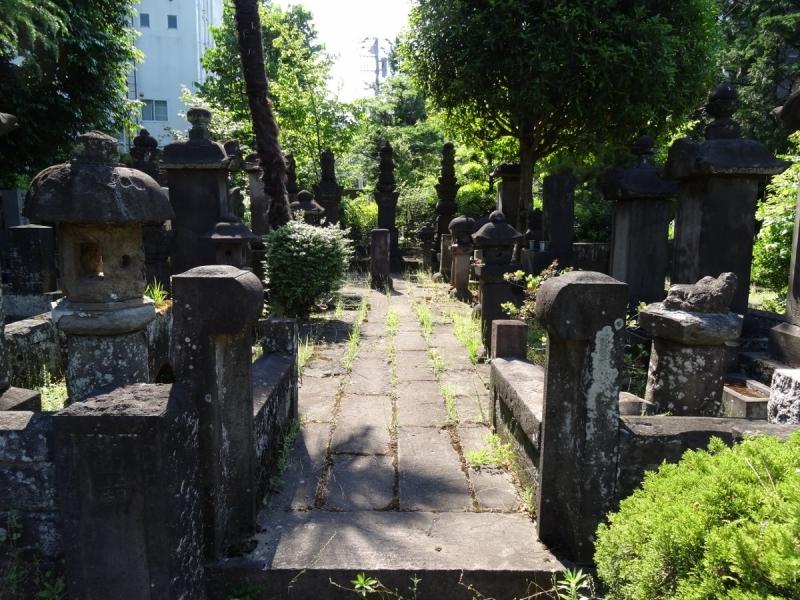 8斉藤利宗 (1200x900)