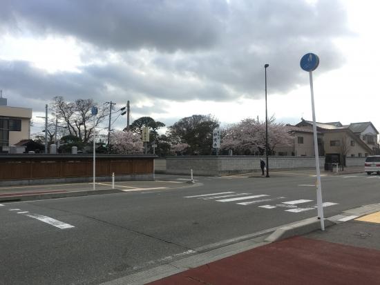 秋田県少年少女レスリング協会総会 009