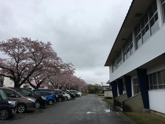北日本レスリング大会 008