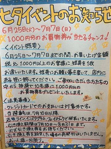 IMG_058333.jpg