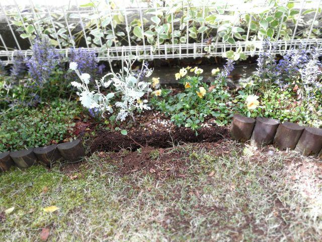 花壇フェンス 連杭