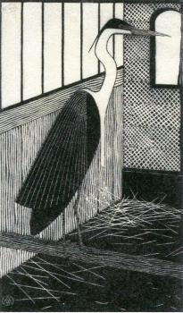 メスキータimg959 (1)