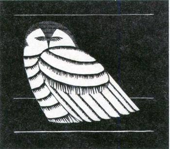 メスキータimg959 (2)
