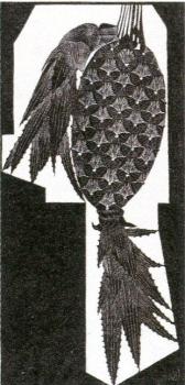 メスキータimg959 (9)