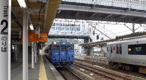 P1270604.jpg