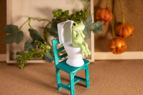 ツバキアキラが撮ったカエルのコポー。椅子の上のトイレに困惑するコポタロウ。
