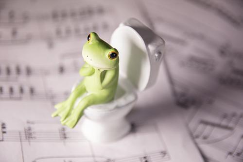 ツバキアキラが撮ったカエルのコポー。綺麗な音楽に癒やされながら用を足しているコポタロウ。