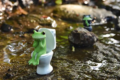 ツバキアキラが撮ったカエルのコポー。せせらぎの中で、用を足しているコポタロウと、それを見つめる忍者コポタロウ。