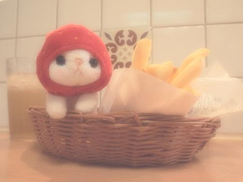 モスバーガーで、ハンバーガーができるまでの間、cho cho本舗のいちご猫ちゃんを撮っていました。