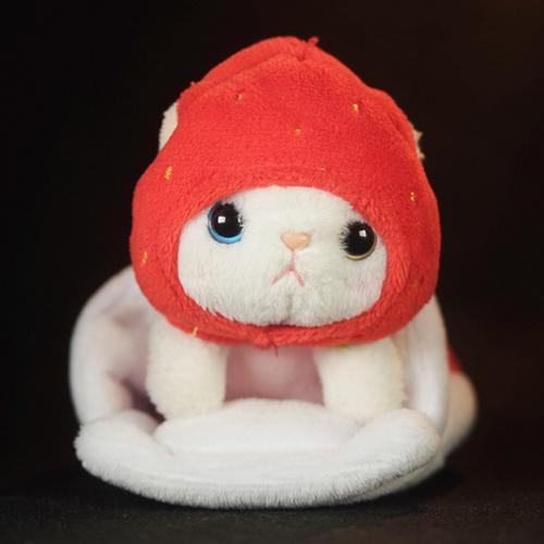 cho cho本舗のいちご猫ちゃん。スタンプに使えそうな感じで、写真を撮ってみた。