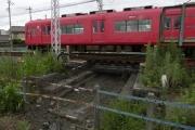 P1090087.jpg
