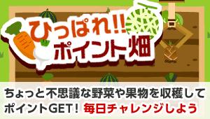 bnr_vegetable_field.png