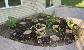 garden0610201903.jpg