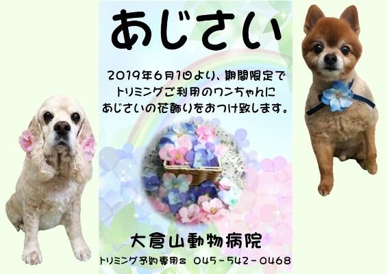 Blog用-1
