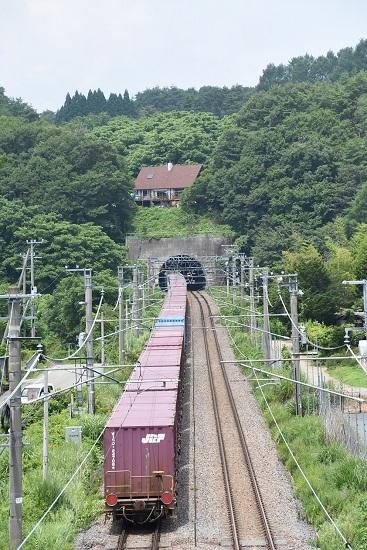 2019年7月29日 東線貨物2083レ 後撃ちトンネルへ飛び込む