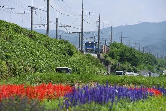 2019年7月30日 東線貨物2083レ お花畑から
