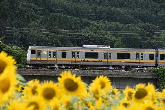 諏訪湖花火臨 E233系8000番台 ナハN21編成