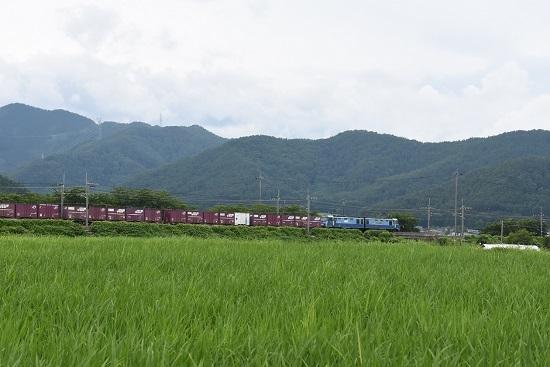 東線貨物2083レ EH200-10号機 みどり湖にて