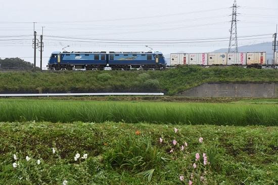 7月20日 東線貨物2083レ EH200-15号機