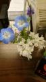 20190418テーブルの花