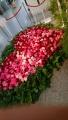 20190515バラ祭り2