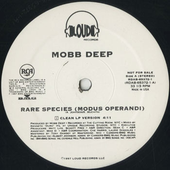 HH_MOBB DEEP_RARE SPECIES_20190617