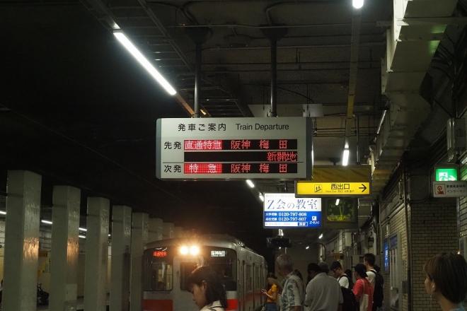 X8110004.jpg