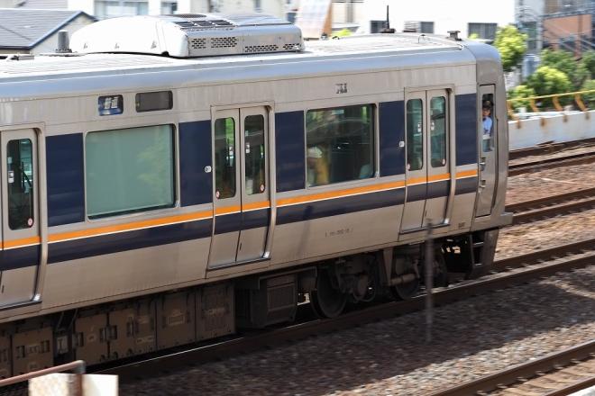 X8120080.jpg