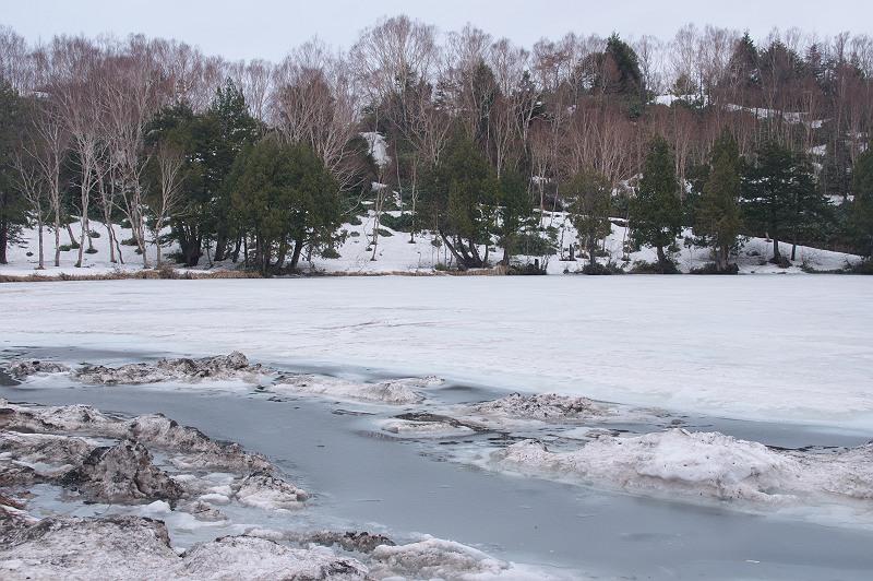 雪の木戸池