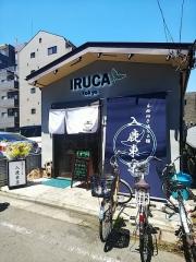 IRUCA -Tokyo- 本格柚子塩らぁ麺 入鹿東京【弐】-1