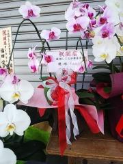 【新店】宍道湖しじみ中華蕎麦 琥珀-4