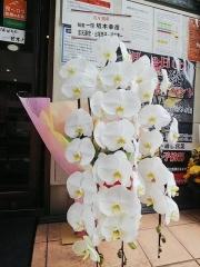 麺屋 一燈【六四】-4