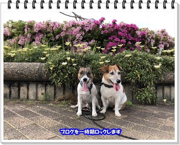 3566ブログNo4