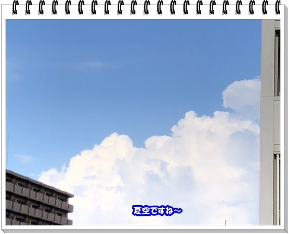 3604ブログNo1