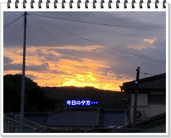 3624ブログNo4