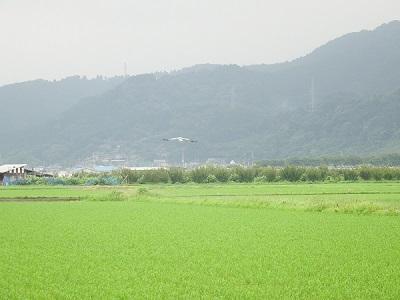 kounotori20190709-4-1.jpg