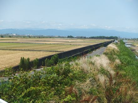 yanagawa10_07.jpg