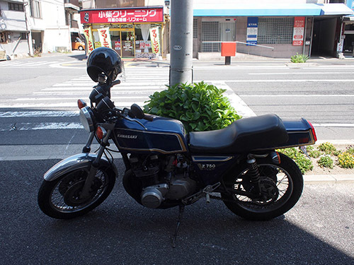 P5153700.jpg
