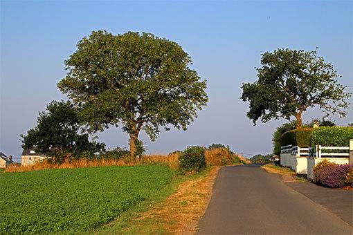 エピーヌ道路の風景