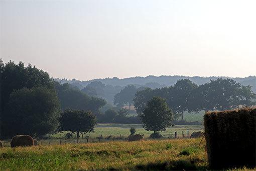 ノルマンディー シャンポー村のボンヌヴィル道路の畑と森と