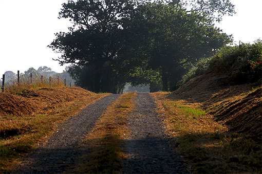 シャンポー村の農道