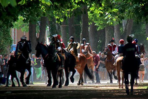 指輪祭りゴール地点の馬たち