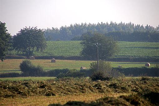 シャンポー村からリュセルヌ・ドゥトゥルメール修道院 牧歌的風景