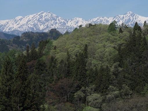 柏土展望台から五竜岳と鹿島槍ヶ岳