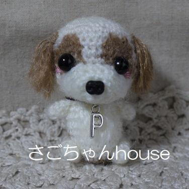 P1170089.jpg