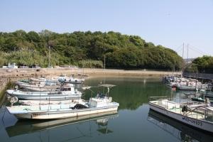 19瀬戸芸沙弥島4
